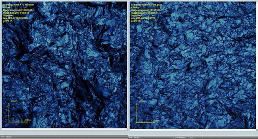 Figure 6:  LEXT OLS4100 screen shots of area scans of the surfaces of scrapers used on fresh hide and dry hide