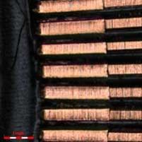 Microscope image