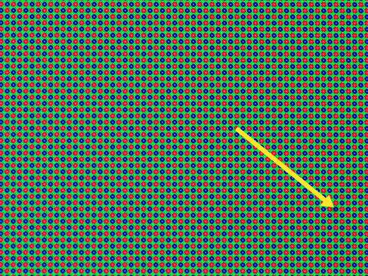 Probenbilder mit genauer Farbwiedergabe